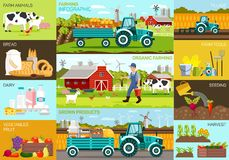 Organic Farming Infographic and Grown Products. Flat Set Organic Farming Infographic and Grown Products. Vector Illustration on Colored Background Farm Animals vector illustration
