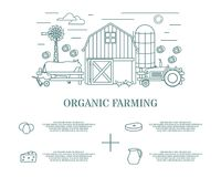 Organic farming vector illustration in linear style Stock Photo