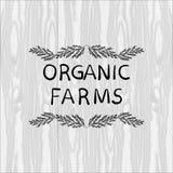 Organic Farms VECTOR illustration, Floral Doodle Frame, Black Outline Vignette. Organic Farms VECTOR illustration, Floral Doodle Frame, Black Outline Vignette Royalty Free Stock Images