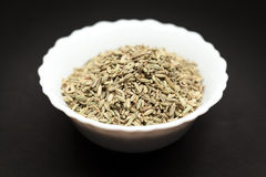 Organic Fennel seed in ceramic bowl. Organic Fennel seed (Foeniculum Vulgare) in white ceramic bowl on dark background stock photo
