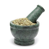 Organic Fennel seed (Foeniculum Vulgare) on marble pestle. Stock Image