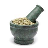 Organic Fennel seed (Foeniculum Vulgare) on marble pestle. Stock Image