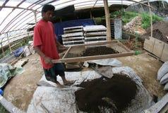 Organic fertilizer Royalty Free Stock Photography
