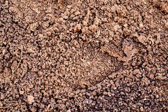 Organic Fertilizer made by dry chicken dung, manure Stock Photos