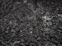 Organic fertilizer texture. Black earth. Agricultural production royalty free stock images