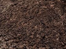 Organic fertilizer texture. Fertilization in the spring on the field stock photo