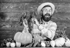 Organic fertilizers make harvest healthy and rich. Farmer with homegrown vegetables harvest. Organic pest control. Excellent quality harvest. Man with beard stock photography