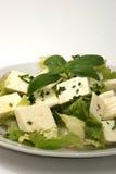 Organic feta cheese with fresh basil Stock Photos