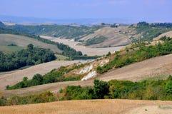 Organic fields in rural Tuscany , Italy  Stock Photos