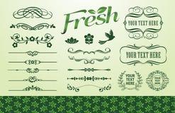 Organic fillet set Royalty Free Stock Photo