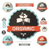Organic Flat Design Retro Vector Labels Royalty Free Stock Image
