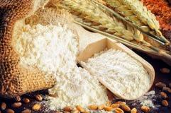 Organic flour and wheat Stock Image