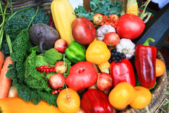 Organic food background Vegetables Stock Image