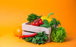 Organic food background Vegetables in the basket. tomatos, pepper, parsley Royalty Free Stock Image