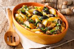 Organic food: baked wild mushrooms with potatoes, dill, parsley. And cheddar cheese in a baking dish close-up on the table. horizontal stock photos
