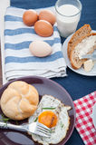 Organic food, breakfast, rural theme. Colorful breakfast theme, morning concept royalty free stock photo