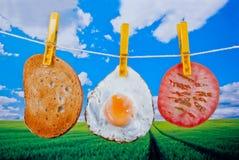 Organic food concept Stock Photos