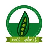 Organic food Royalty Free Stock Image