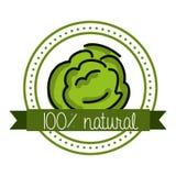 Organic food Royalty Free Stock Photography