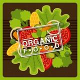 Organic food. Design, vector illustration eps10 graphic Stock Photos