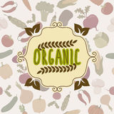 Organic food frame. Vegetables seamless pattern Royalty Free Stock Images