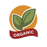 Organic food fresh from farm label vector illustration. Green leaves Royalty Free Stock Photos