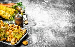Organic food. Fresh mushrooms and vegetables. On a rustic background Stock Images