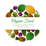 Organic food fruits banner Stock Photography