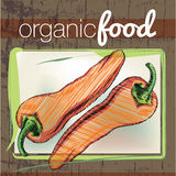 Organic Food illustration Royalty Free Stock Photo