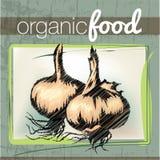 Organic Food illustration Royalty Free Stock Images