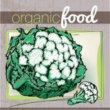 Organic Food illustration Stock Photography