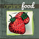 Organic Food illustration Stock Photography