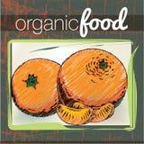 Organic Food illustration Stock Photos