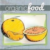 Organic Food illustration Royalty Free Stock Photos