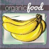 Organic Food illustration Stock Image