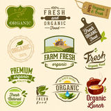 Organic food - Illustration Stock Photography