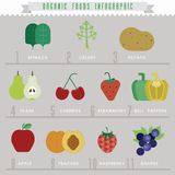 Organic food Info-graphics Stock Photo