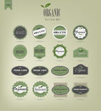 Organic food labels and elements. Green Label Vector Illustration