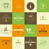 Organic food labels Stock Photography