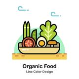Organic Food Line Color Icon royalty free illustration