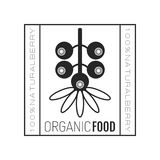 Organic food. Logo, badge, label for healthy eating, berry icon Royalty Free Stock Photos
