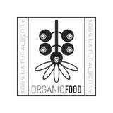 Organic food. Logo, badge, label for healthy eating, berry icon. Organic food. Logo, badge and label for healthy eating with berry icon, silhouette. Vector vector illustration