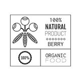 Organic food. Logo, badge, label for healthy eating, berry icon Stock Images