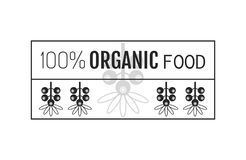 Organic food. Logo, badge, label for healthy eating. Berry icon Stock Images