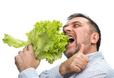 Organic food Stock Photography