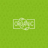 Organic food Royalty Free Stock Images