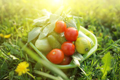 Organic food outdoors Stock Images
