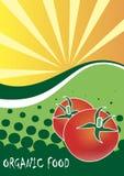 Organic food poster Stock Image