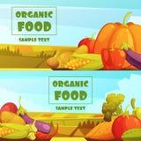 Organic Food 2 Retro Banners Set Stock Photo