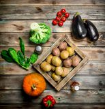 Organic food. Ripe vegetables. On a wooden background stock images